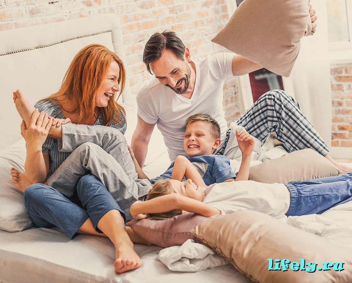 домашняя семья